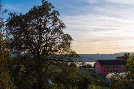 Appisberg-Räumlickeiten-Umgebung-47_klein